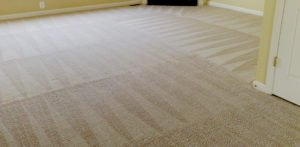 Carpet Cleaning Experts Arizona