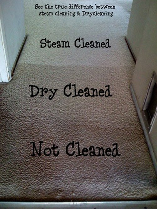 Steam Clean Your Carpet Arizona