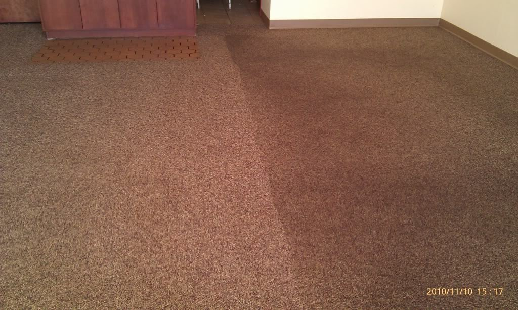 You will see and smell the difference when we clean your carpet
